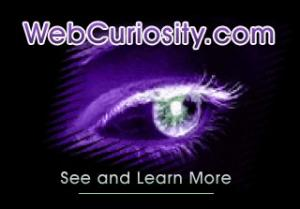 WebCuriosity.com - Are you exciting?